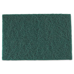Picture for category Scouring Pads/Sticks
