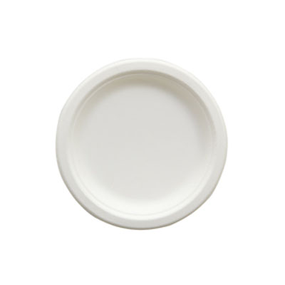 """Picture of 6"""" Heavy Plate Natural White"""