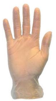 Picture of Gloves, Medium, Vinyl, Powder  Free, 100 EA/BX