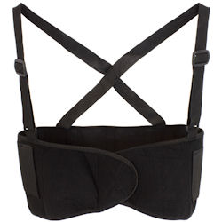 Picture of Back Support, Medium, Z-Back